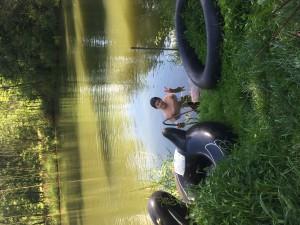 Jára v rybníku